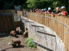 obisk-zoo-2-r-10